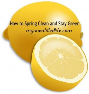 how to spring clean and stay green with homemade cleaners