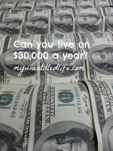 can you live on 30000 a year