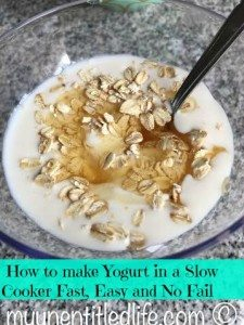 DIY Make your own Yogurt in a slow cooker #recipe