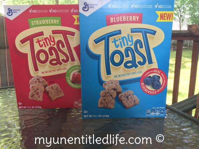 tiny toast fun lunch ideas on the go