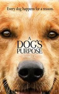 A Dog's Purpose coming soon 1/27  #ADogsPurpose