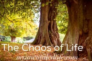 The chaos of Life: inspiration for moms