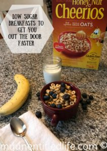 Low Sugar breakfast to get you out the door faster #BigGBreakfast @Publix #AD