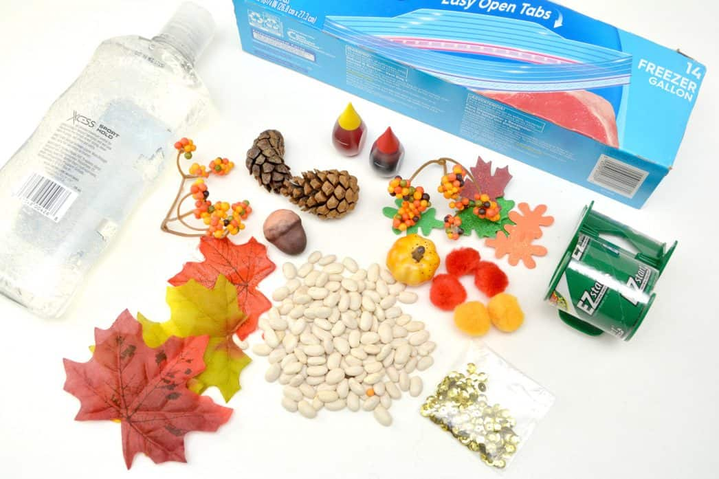 i spy fall sensory bag for preschoolers