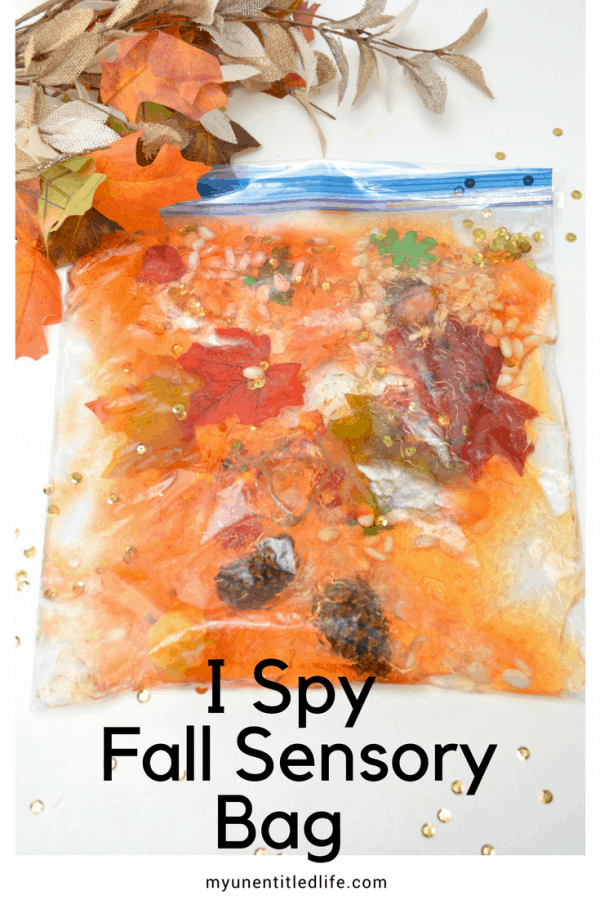 I Spy Fall Sensory Bag for preschool with worksheet