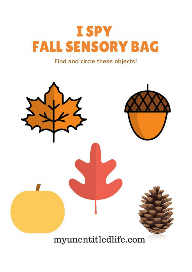 worksheet for sensory bags
