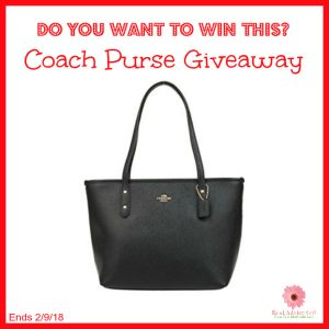 coach purse-giveaway-my-unentitled-life