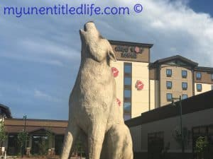great wolf lodge is it for babies and teens?